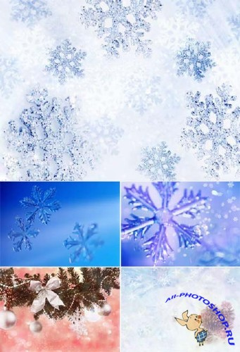 Winter Backgrounds Collection