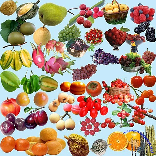 PSD - Fruits set