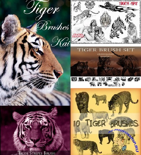 Tiger Photoshop Brush Pack
