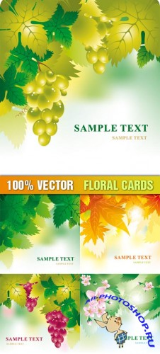 Stock Vector - Floral Cards