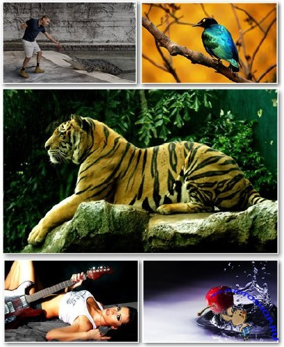 Best HD Wallpapers Pack �65