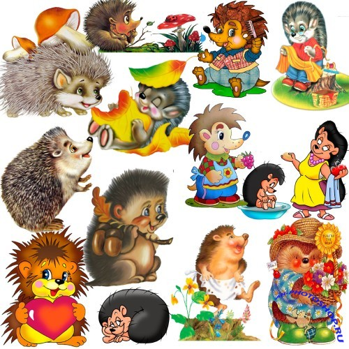 Baby hedgehogs - clipart in format PSD