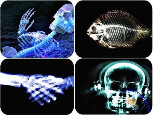 ������������� ���� / X-ray wallpapers