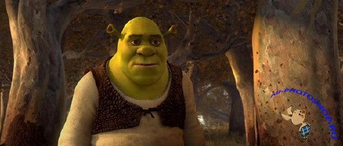 Шрэк навсегда / Shrek Forever After (2010DVDRi700MB)