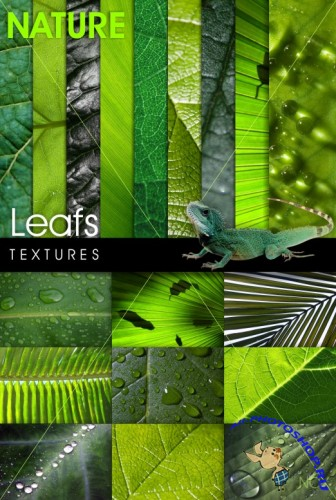 Leafs Textures / �������� ������� �������