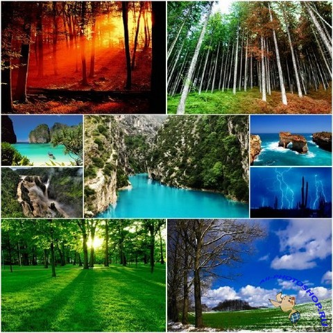 nature wallpapers set 4