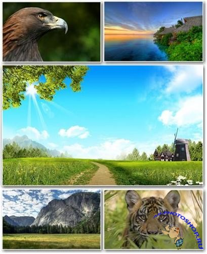 Best HD Wallpapers Pack �151