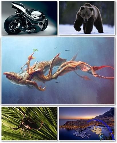 Best HD Wallpapers Pack �170