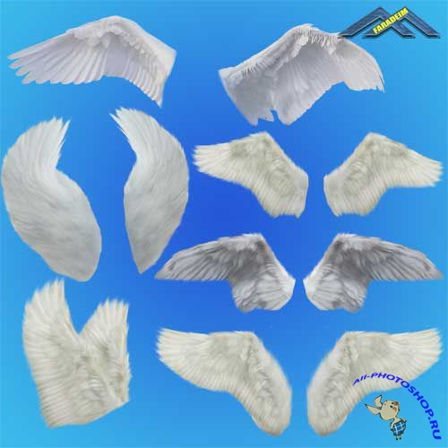 PSD Clipart - Angel Wings