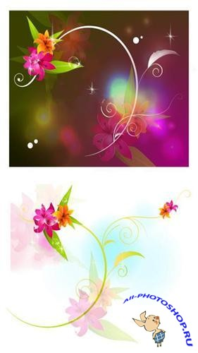 Transparent floral backgrounds