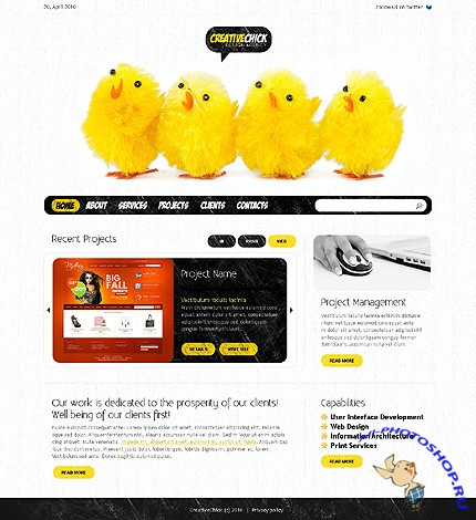 Creative Chick Free Website Template