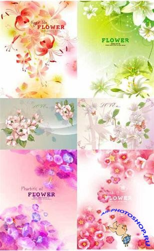 Vector Flower compositions