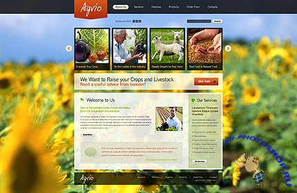 Agrio Agriculture Website Free Template