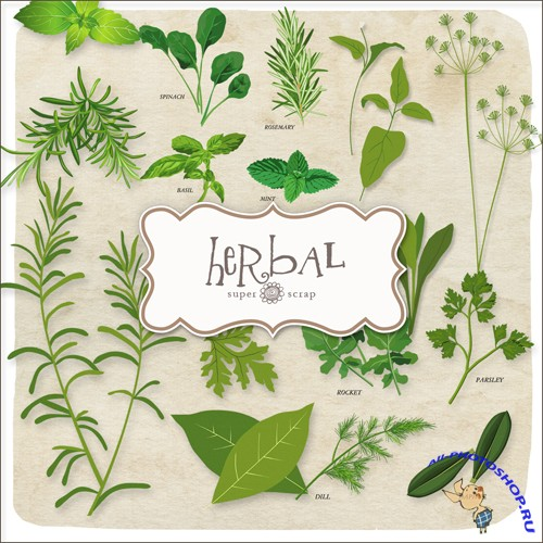Scrap-kit - Herbal Set