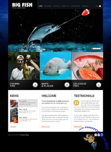 Big Fish Website Free Template