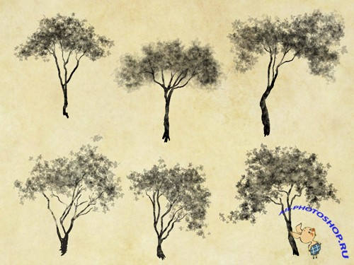 198 Cutout Trees (PSD)
