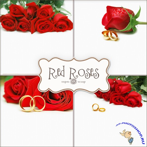 Textures - Red Roses Backgrounds #2