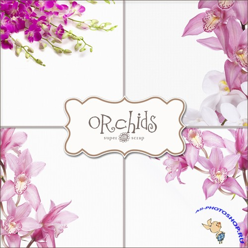 Textures - Orhids Backgrounds #1