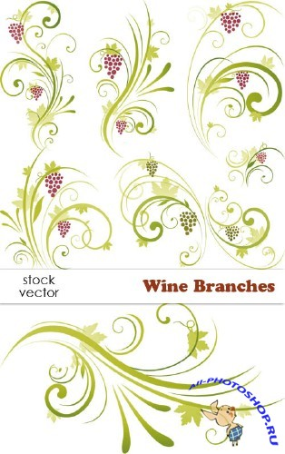 Vectors - Wine Branches  | Виноградные ветви