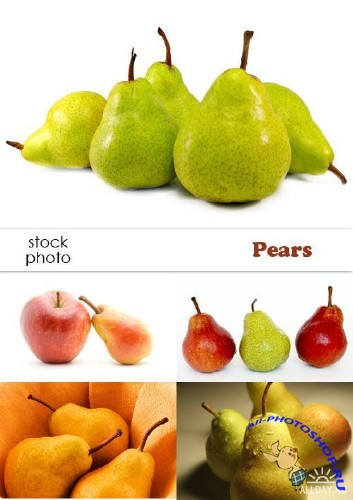 Stock foto - Pears | Груши