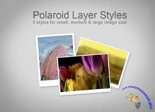 FREE Polaroid Layer Styles