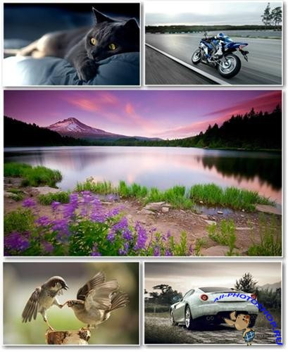 Best HD Wallpapers Pack №230