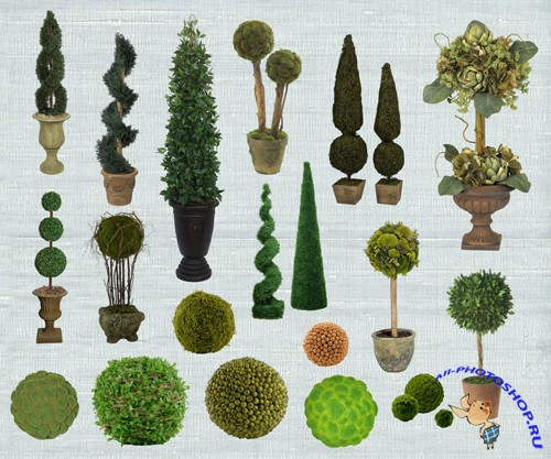 PSD Clipart - Topiary