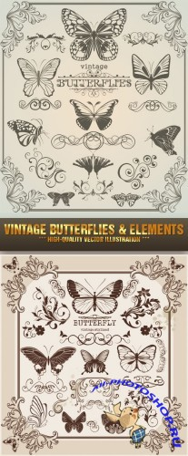 Stock Vector - Vintage Butterflies and Elements | Винтажные бабочки и элементы