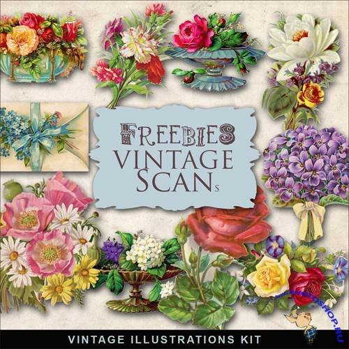 Scrap-kit - Vintage Flowers Illustrations #2