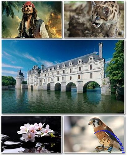 Best HD Wallpapers Pack �242