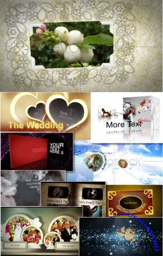 Wedding - Projects for After Effects