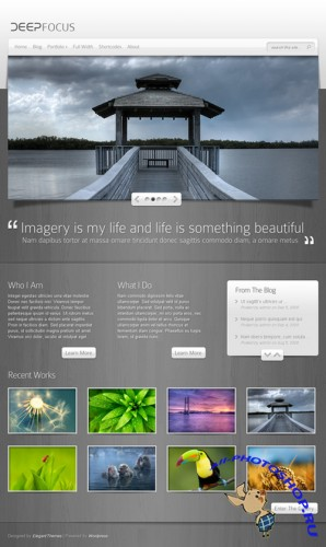 Best Photography Wordpress Themes DeepFocus May 2011