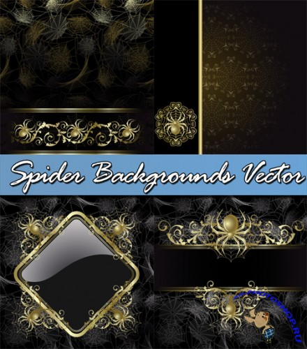 Spider Backgrounds Vector