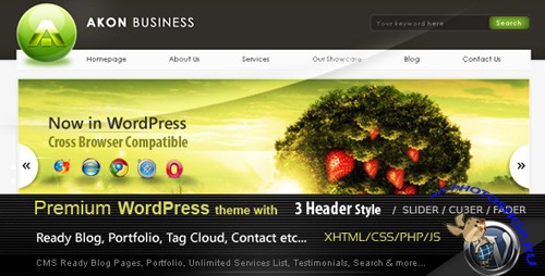 Akon Business premium wordpress Theme nulled