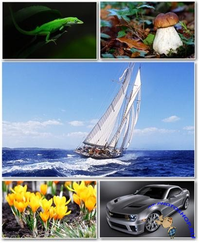 Best HD Wallpapers Pack №291