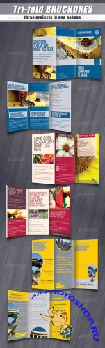 GraphicRiver - Tri-fold brochures PACK