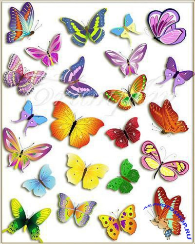 PSD Clipart - High Quality Butterfly