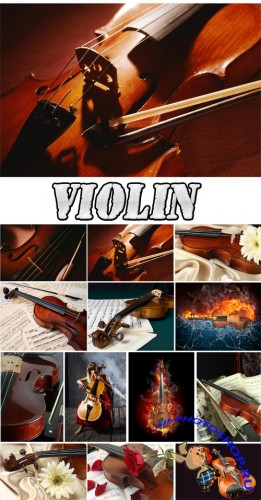Violin - Rastr Cliparts