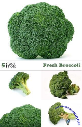 Photos - Fresh Broccoli