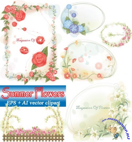 ��������� �������� | Summer Flowers (vector frames)