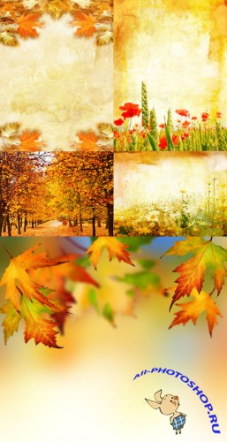 Texture backgrounds autumn leaves # 3