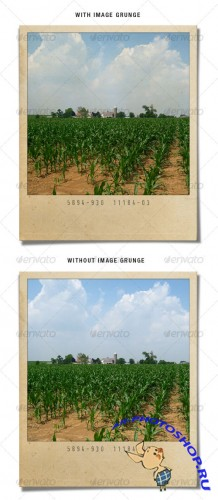 GraphicRiver - Grunge Polaroid