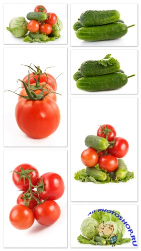 Vegetable Cliparts - vegetables, tomatoes, cucumbers, cabbage, white background