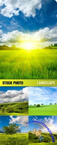 Landscape Stock Photos