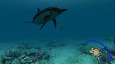 Dolphins 3D Screensaver And Animated Wallpaper v1.0.0.1.