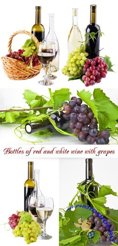 Stock Photo: Bottles of red and white wine with grapes