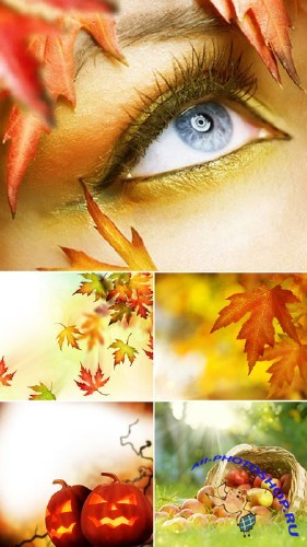 Colors of Fall - Stock Photos