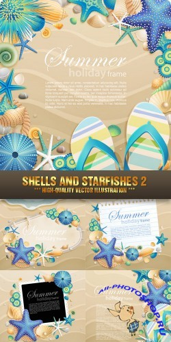 Stock Vector - Shells and Starfishes 2