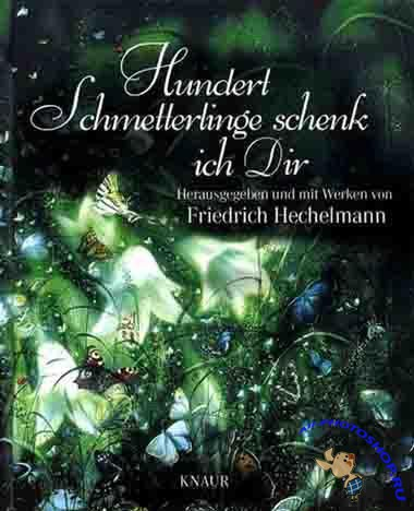 Friedrich Hechelmann - A Hundred Butterflies For You (Artbook)