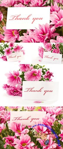 Flower Cards - Stock Photos